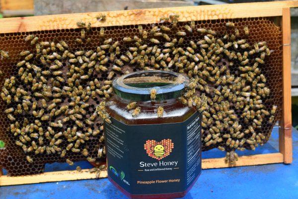pineapple flower honey