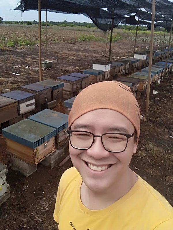 pineapple flower honey bee farm