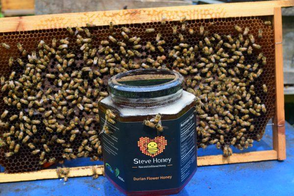 durian flower honey